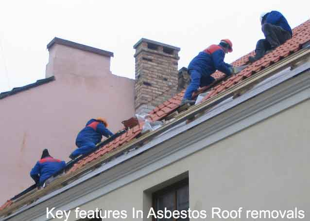 Key features In Asbestos Roof removal Picture
